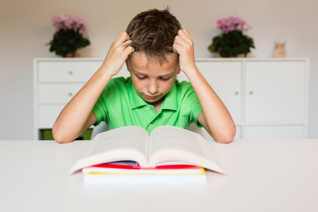 Picture of child with a learning disability having a hard time concentrating on book work.